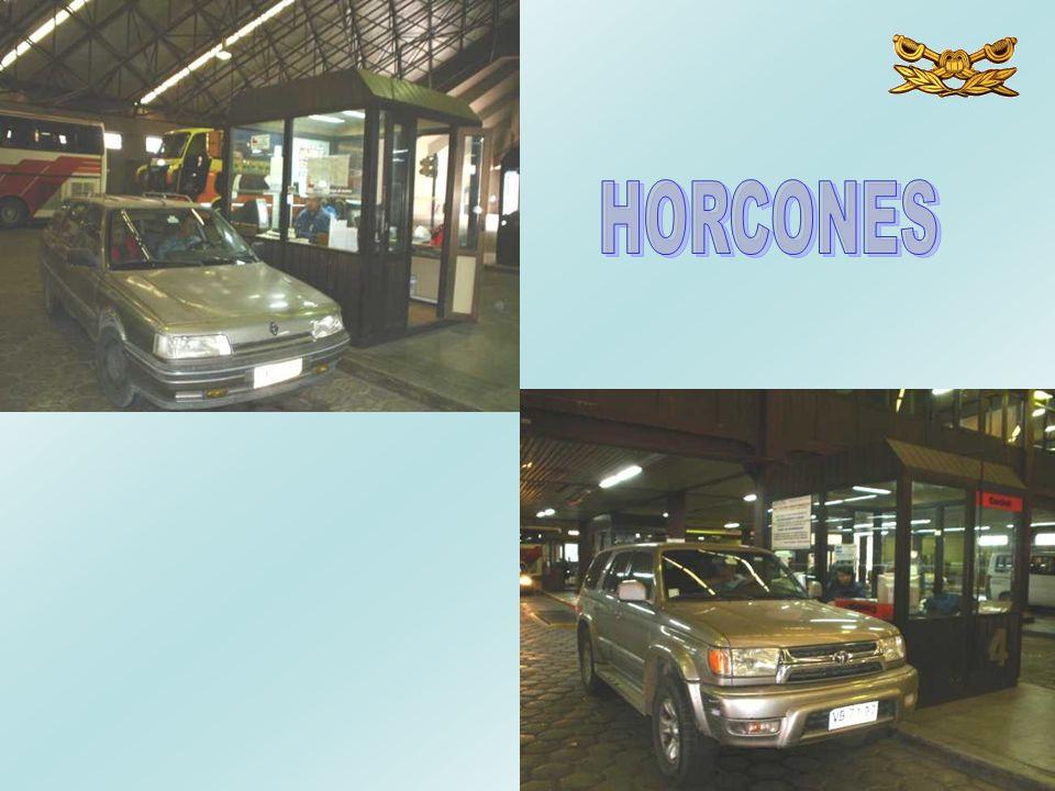 HORCONES
