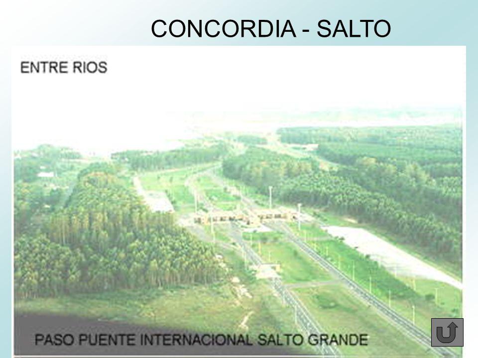 CONCORDIA - SALTO