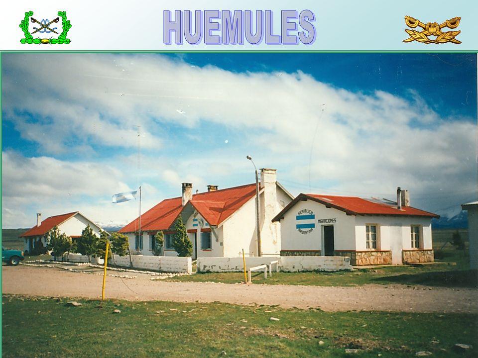 HUEMULES