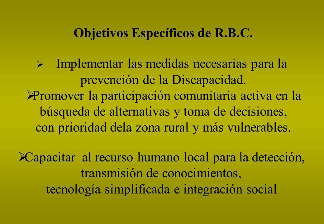 Objetivos Específicos de R.B.C.