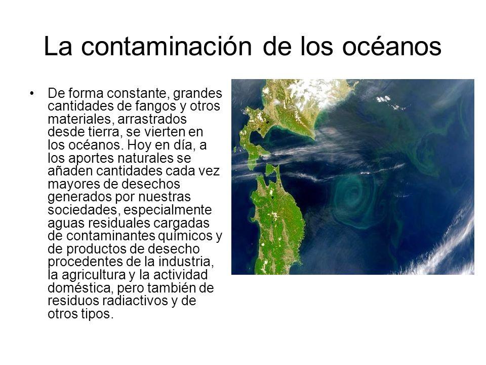 La contaminación de los océanos