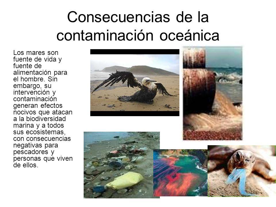 Consecuencias de la contaminación oceánica