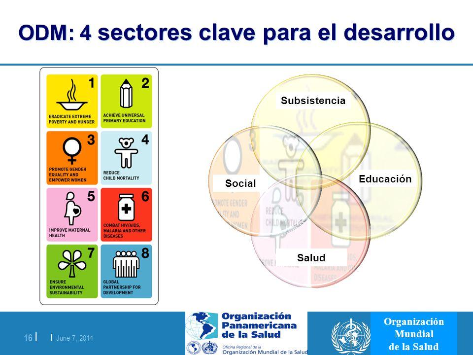 ODM: 4 sectores clave para el desarrollo