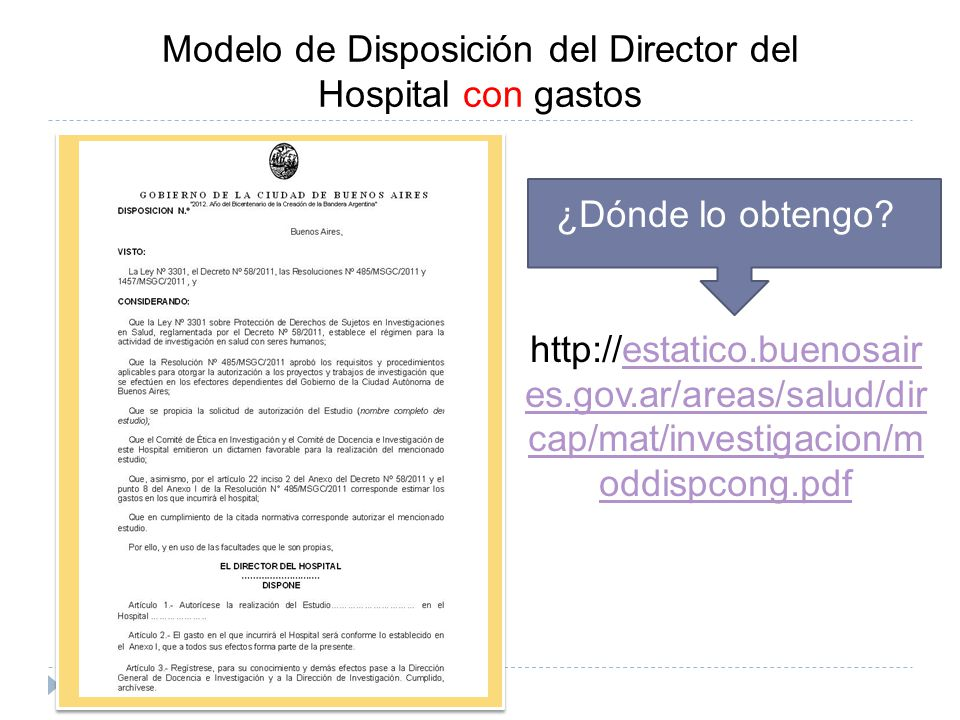 Modelo de Disposición del Director del Hospital con gastos