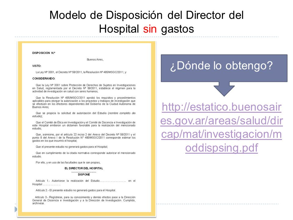 Modelo de Disposición del Director del Hospital sin gastos