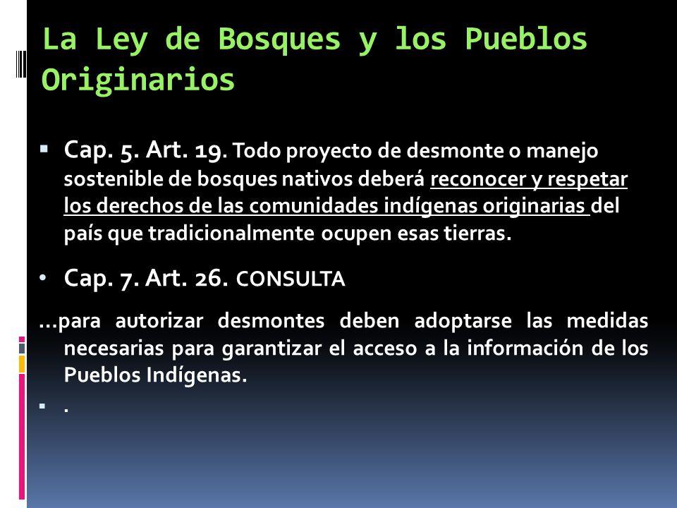 La Ley de Bosques y los Pueblos Originarios