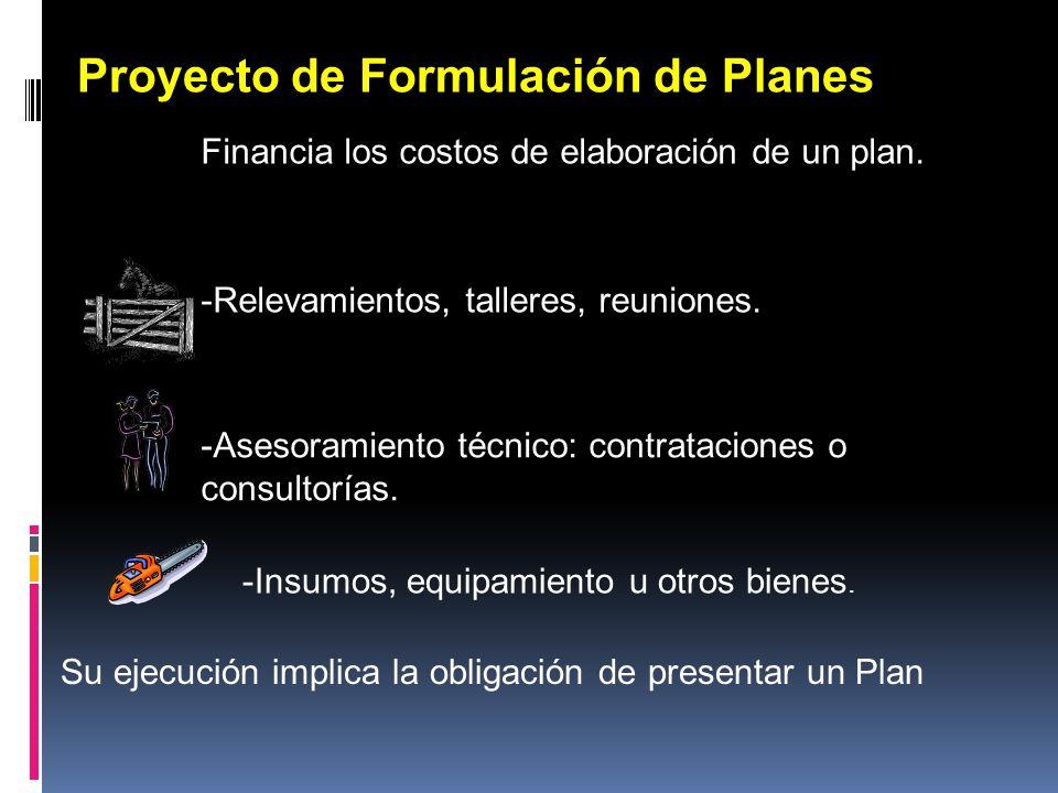 Proyecto de Formulación de Planes