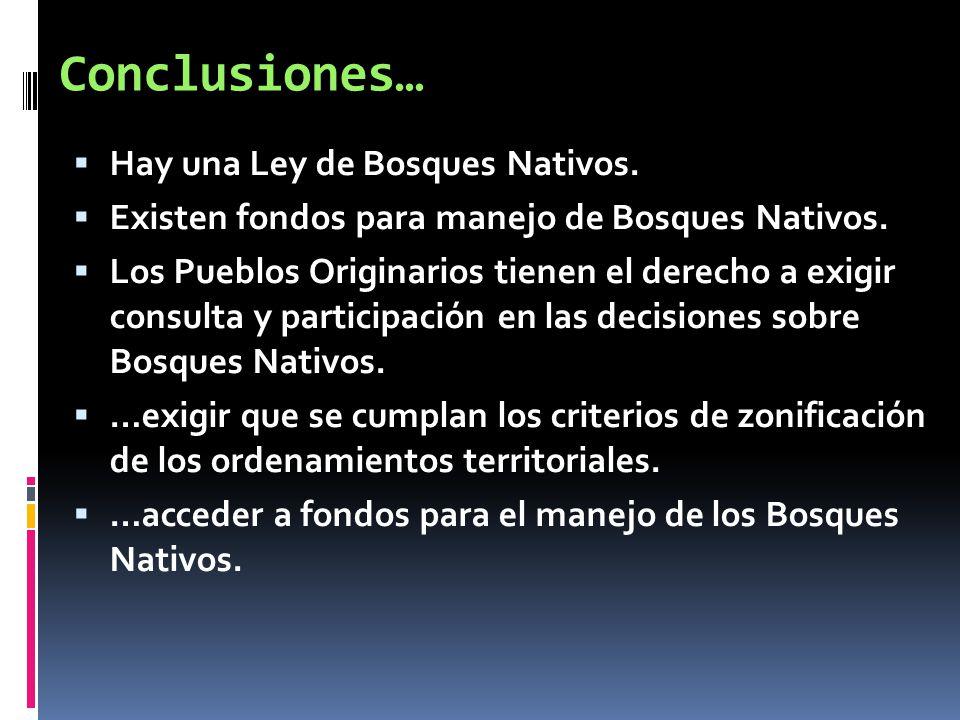 Conclusiones… Hay una Ley de Bosques Nativos.
