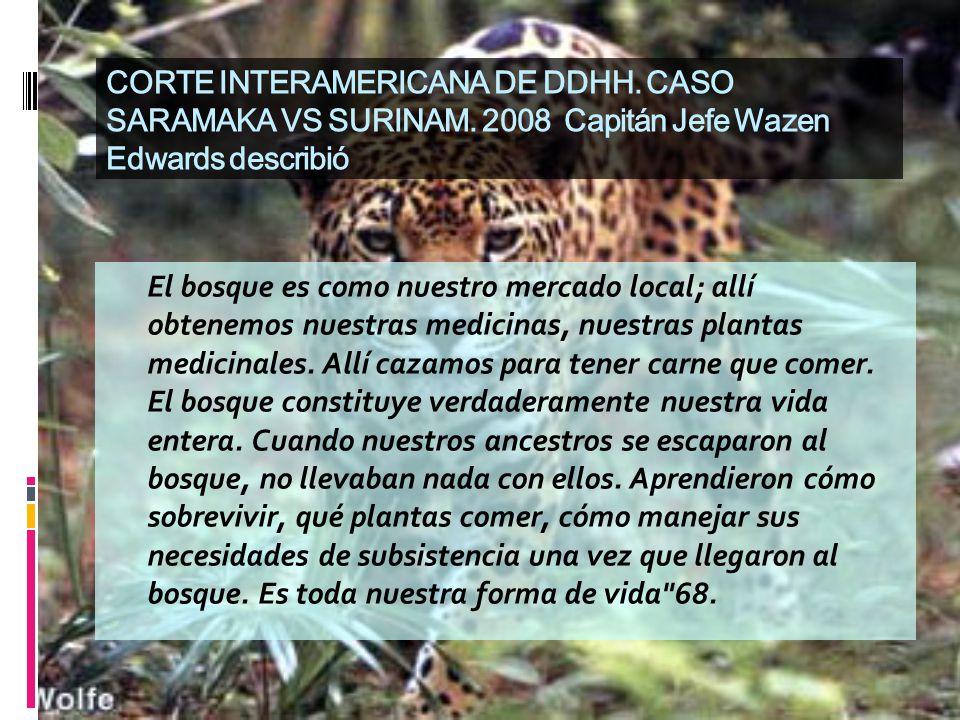 CORTE INTERAMERICANA DE DDHH. CASO SARAMAKA VS SURINAM