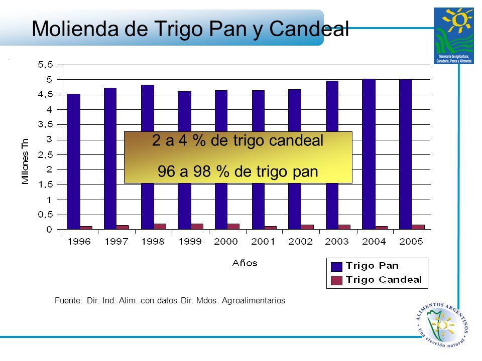 Molienda de Trigo Pan y Candeal