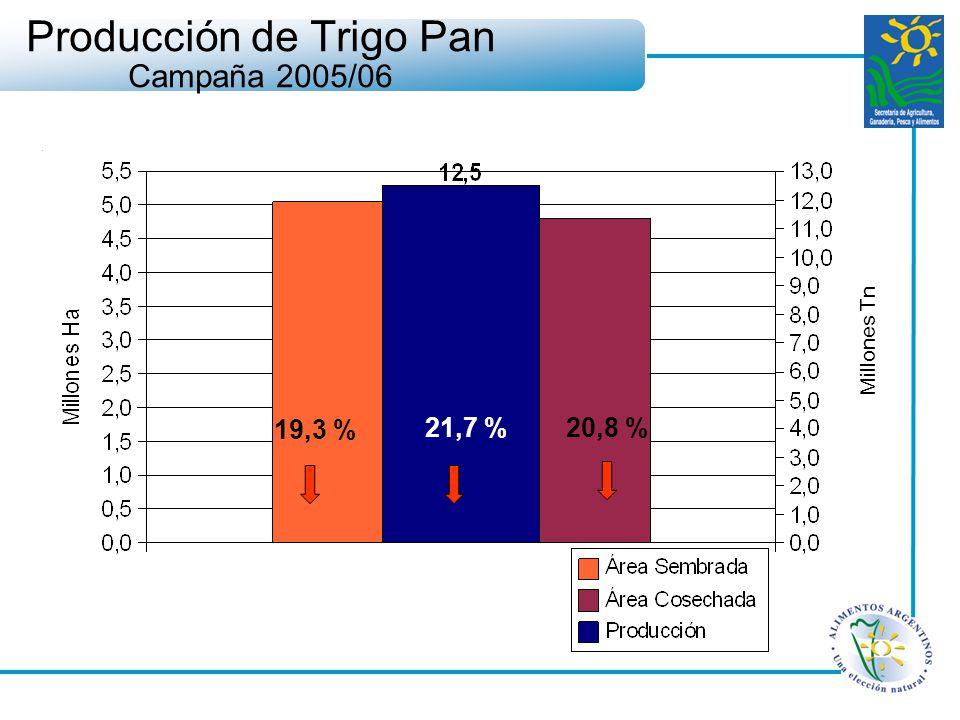 Producción de Trigo Pan Campaña 2005/06