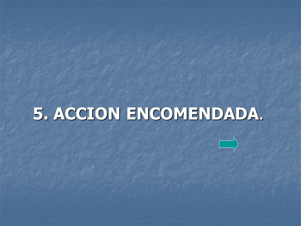 5. ACCION ENCOMENDADA.