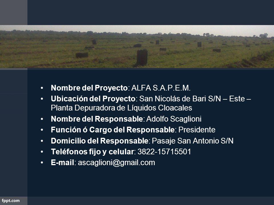 Nombre del Proyecto: ALFA S.A.P.E.M.