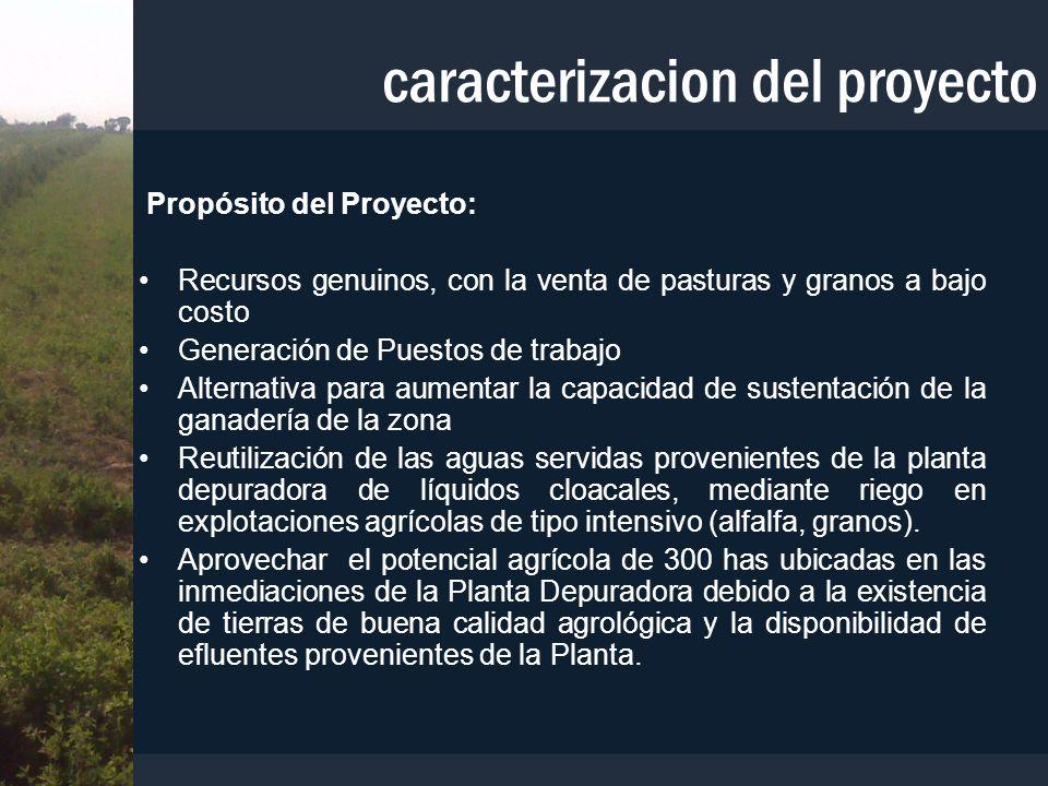caracterizacion del proyecto