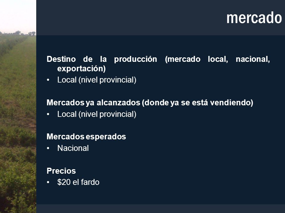 mercado Destino de la producción (mercado local, nacional, exportación) Local (nivel provincial)