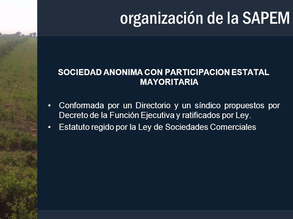 organización de la SAPEM