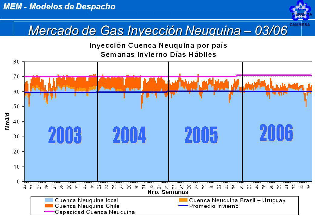 Mercado de Gas Inyección Neuquina – 03/06