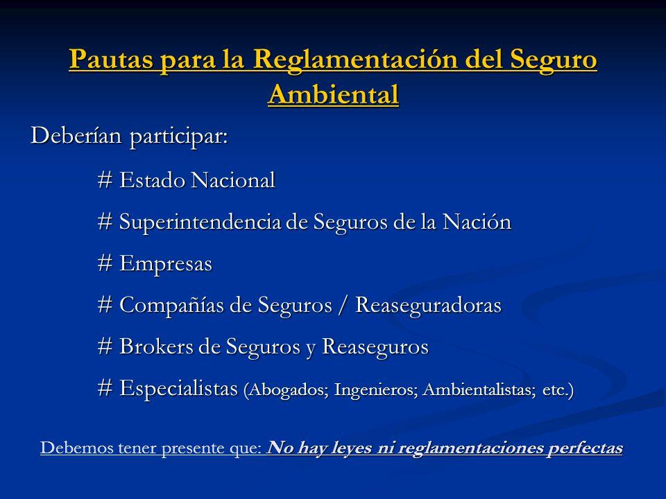 Pautas para la Reglamentación del Seguro Ambiental