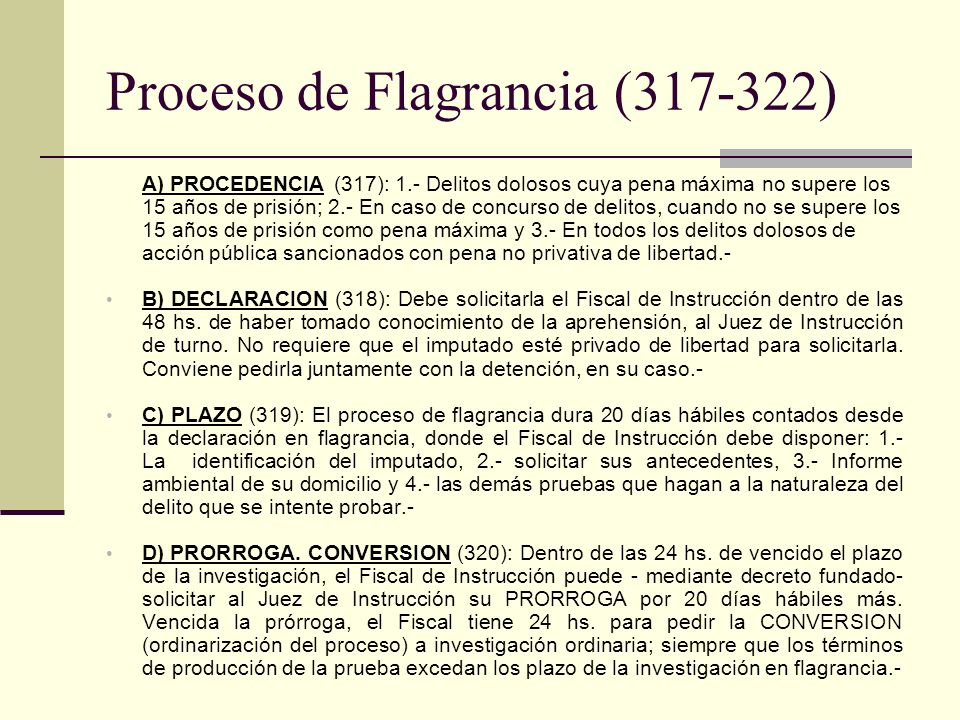 Proceso de Flagrancia (317-322)
