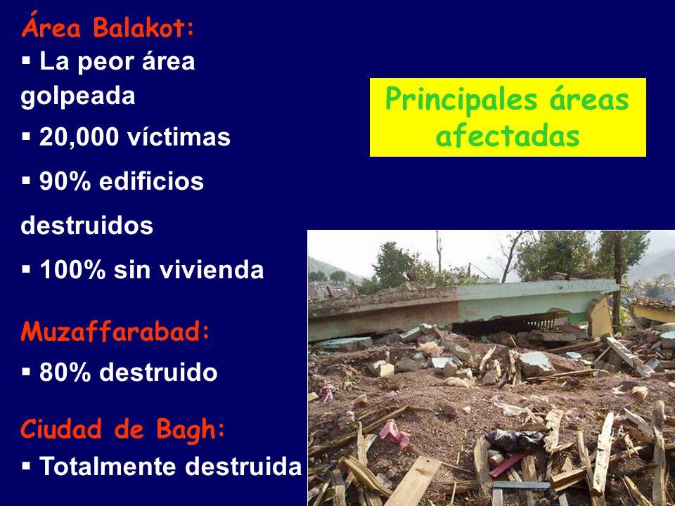 Principales áreas afectadas