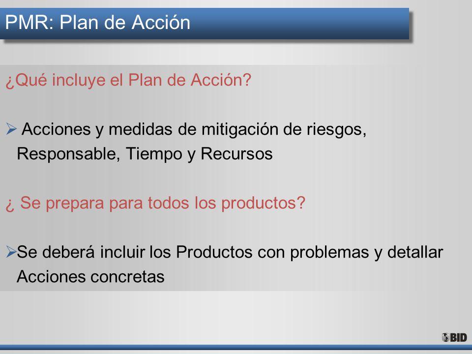 PMR: Plan de Acción ¿Qué incluye el Plan de Acción