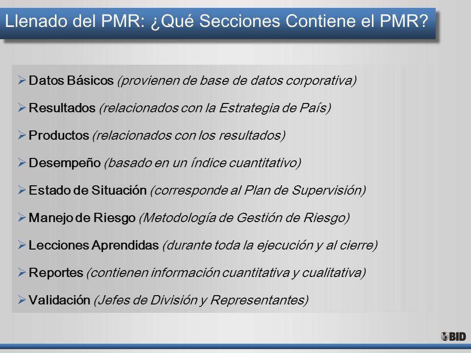 Llenado del PMR: ¿Qué Secciones Contiene el PMR
