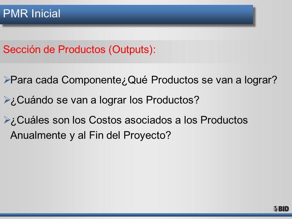 PMR Inicial Sección de Productos (Outputs):