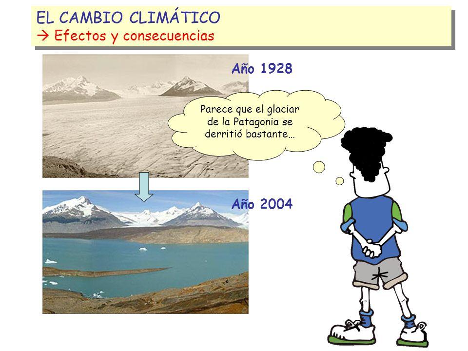 Parece que el glaciar de la Patagonia se derritió bastante…