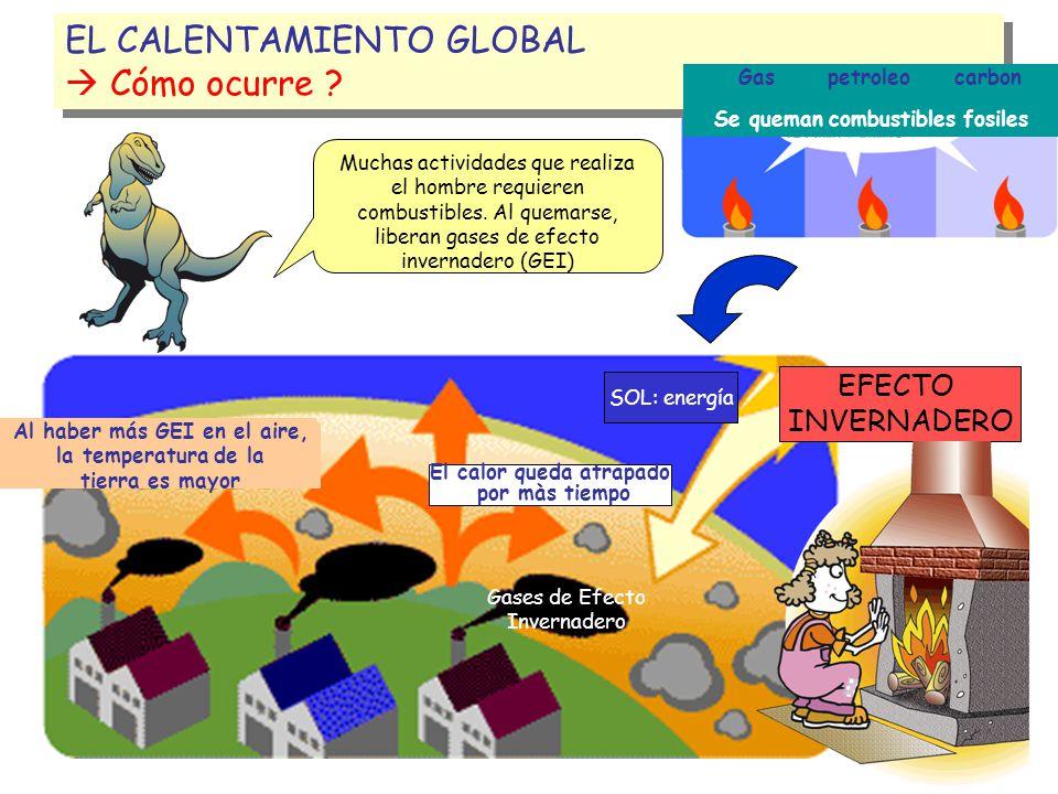 EL CALENTAMIENTO GLOBAL  Cómo ocurre