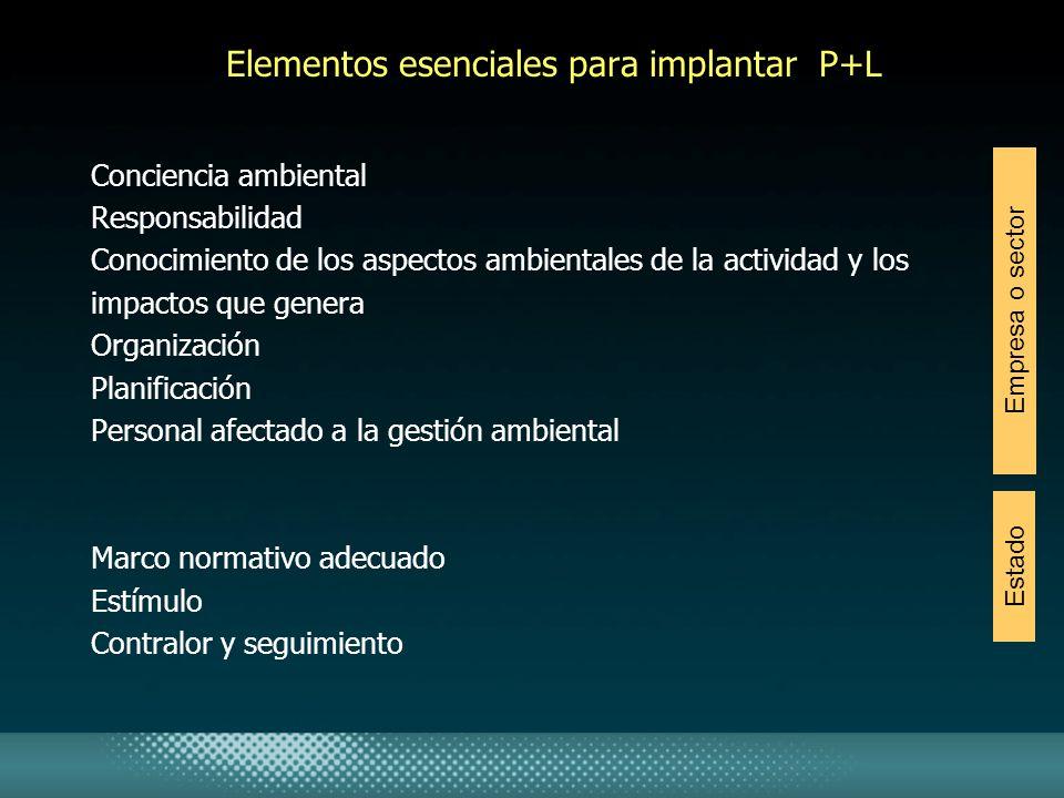 Elementos esenciales para implantar P+L