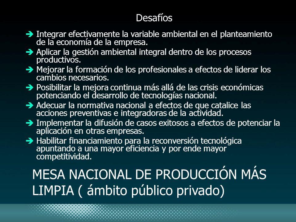 MESA NACIONAL DE PRODUCCIÓN MÁS LIMPIA ( ámbito público privado)