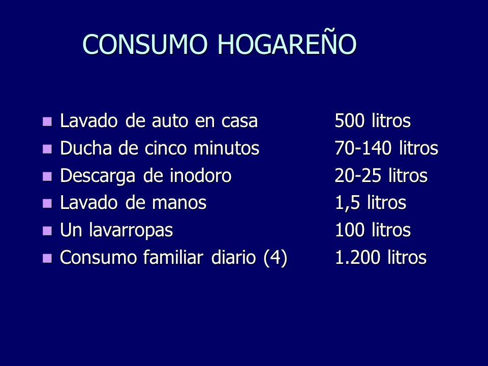 CONSUMO HOGAREÑO Lavado de auto en casa 500 litros