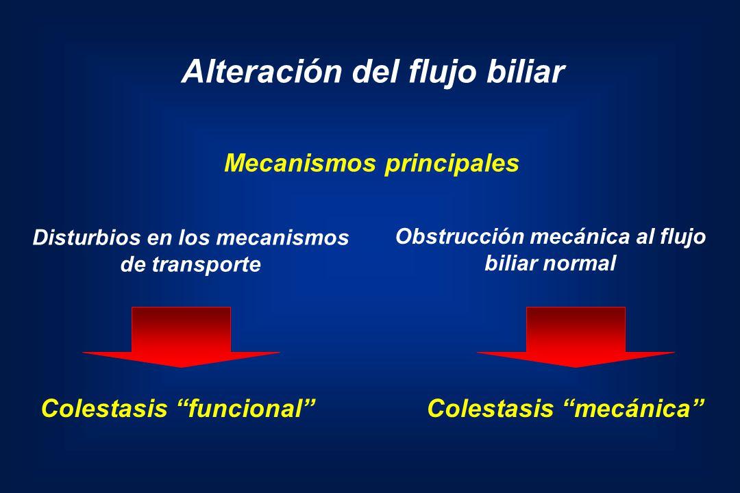 Disturbios en los mecanismos Obstrucción mecánica al flujo