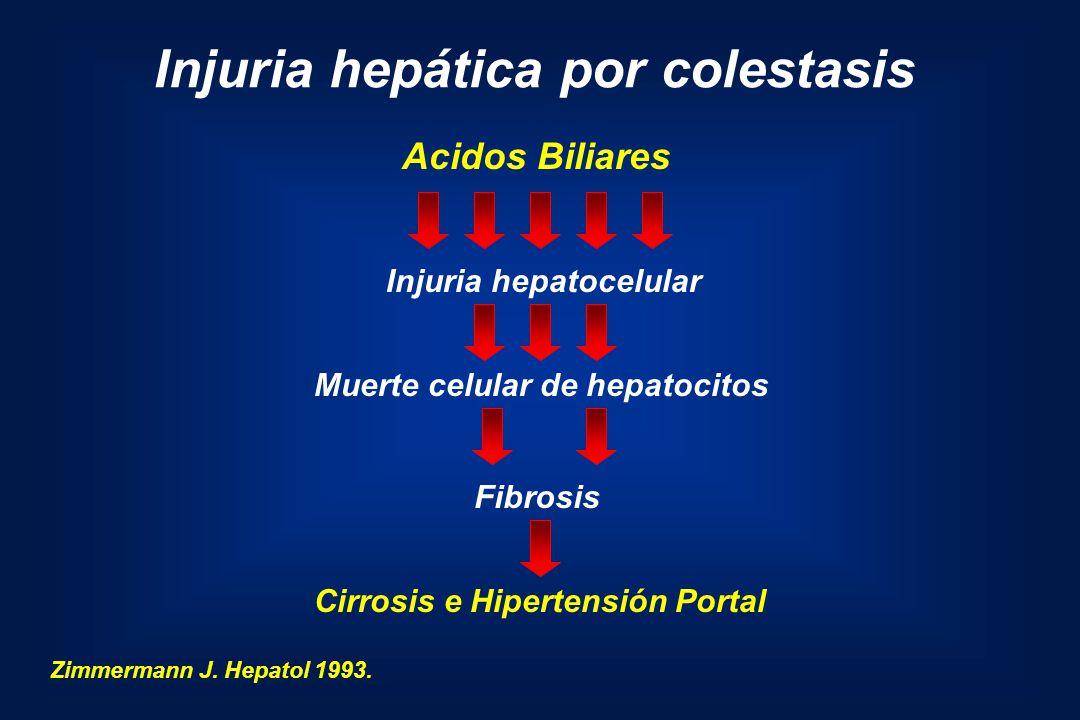 Injuria hepática por colestasis