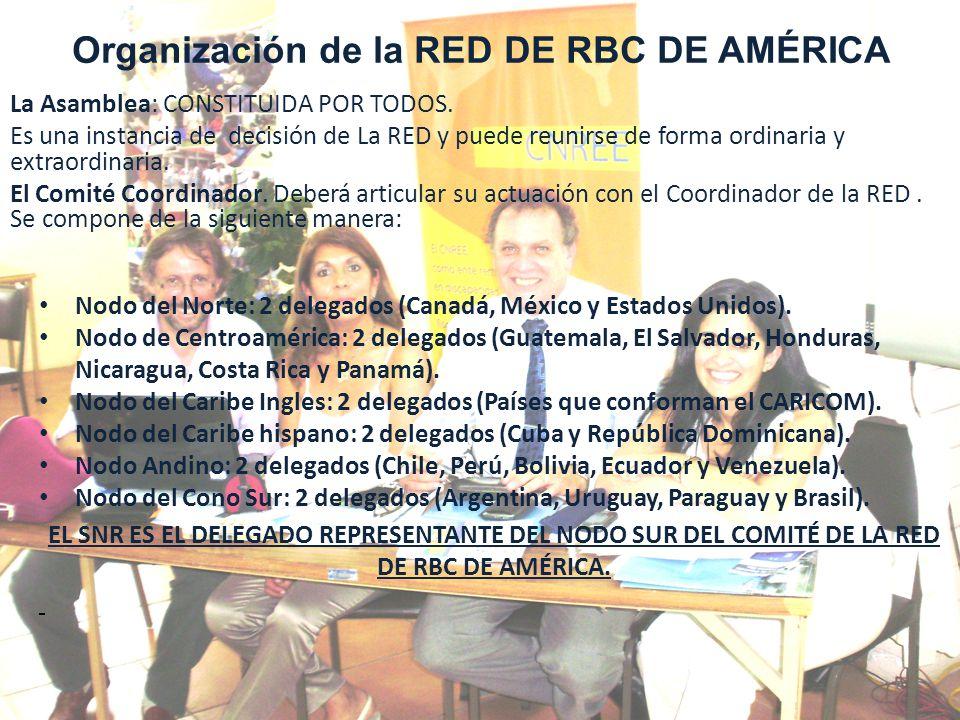 Organización de la RED DE RBC DE AMÉRICA