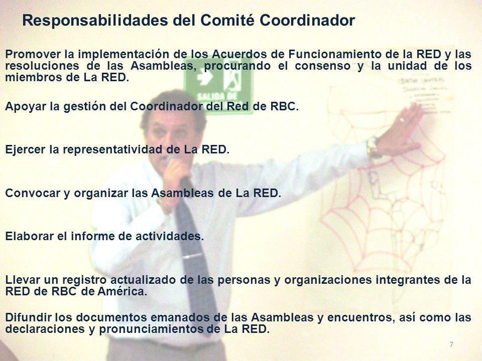 Responsabilidades del Comité Coordinador