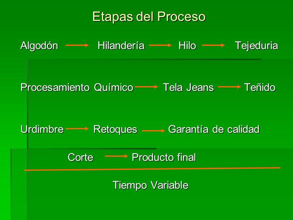 Etapas del Proceso Algodón Hilandería Hilo Tejeduria