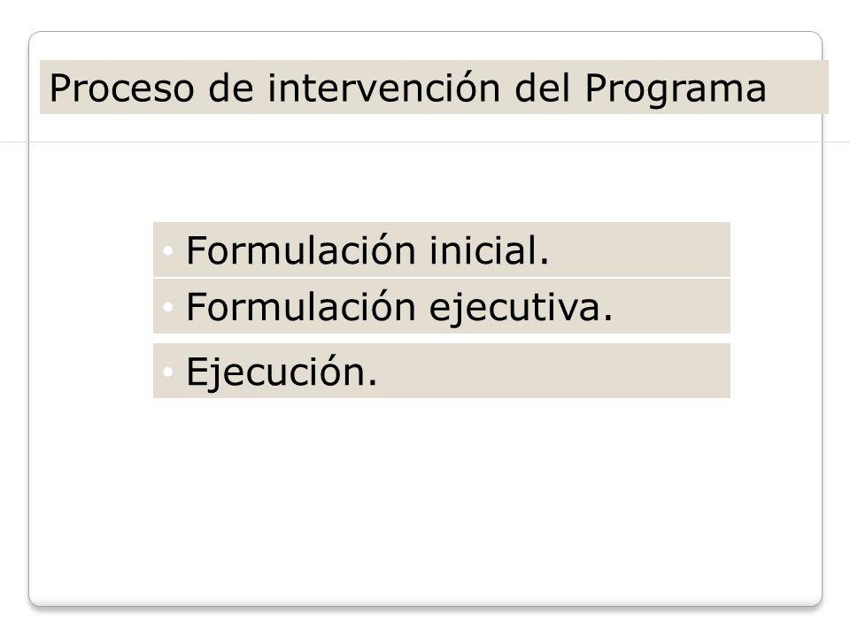 Proceso de intervención del Programa