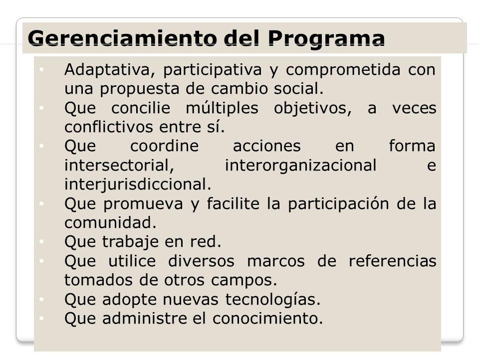 Gerenciamiento del Programa