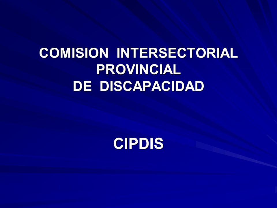 COMISION INTERSECTORIAL PROVINCIAL DE DISCAPACIDAD