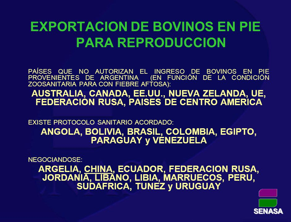 EXPORTACION DE BOVINOS EN PIE PARA REPRODUCCION