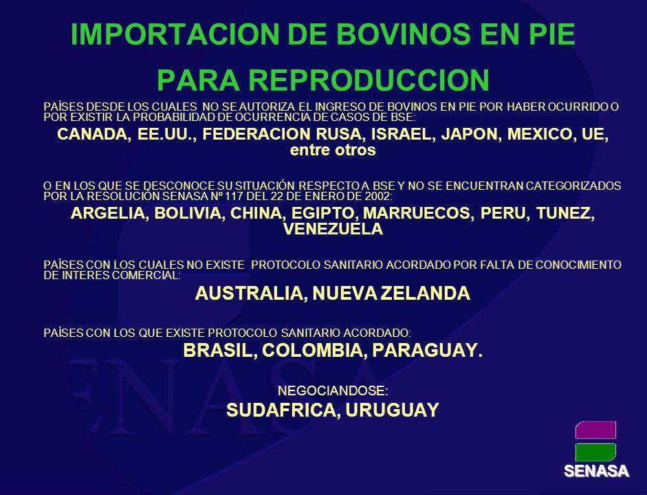 IMPORTACION DE BOVINOS EN PIE PARA REPRODUCCION