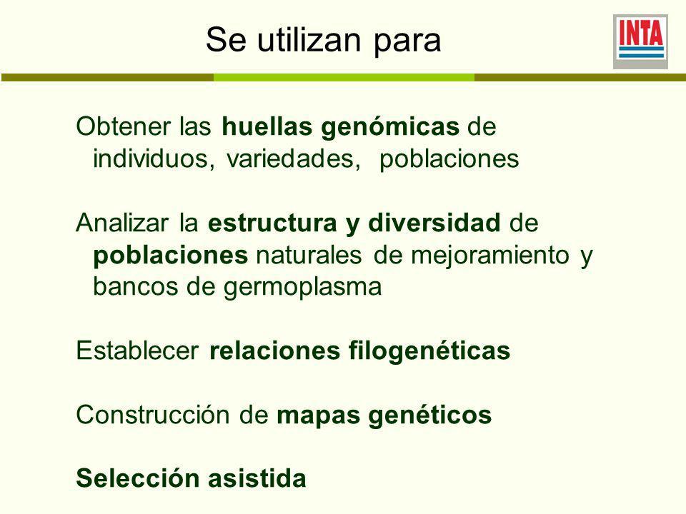 Se utilizan para Obtener las huellas genómicas de individuos, variedades, poblaciones.