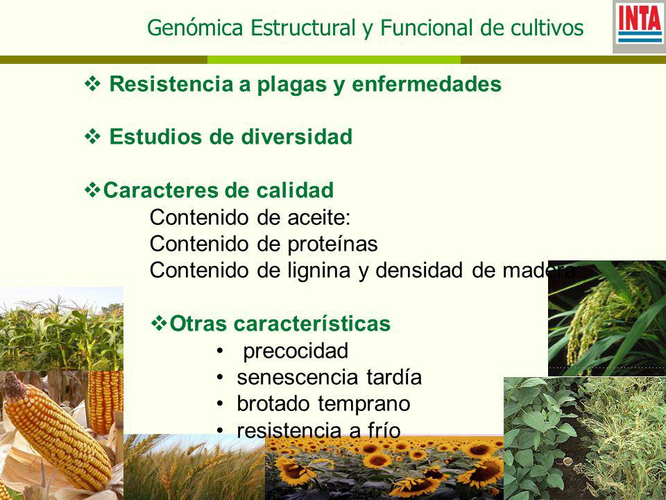 Genómica Estructural y Funcional de cultivos