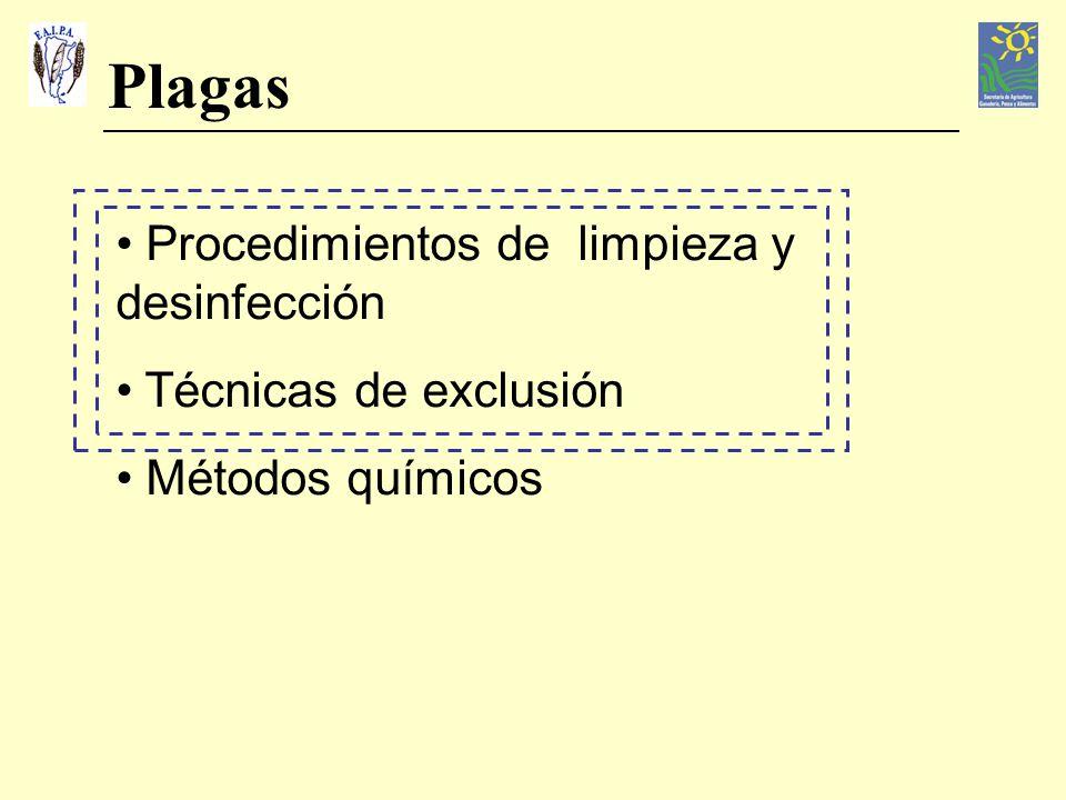 Plagas Procedimientos de limpieza y desinfección Técnicas de exclusión