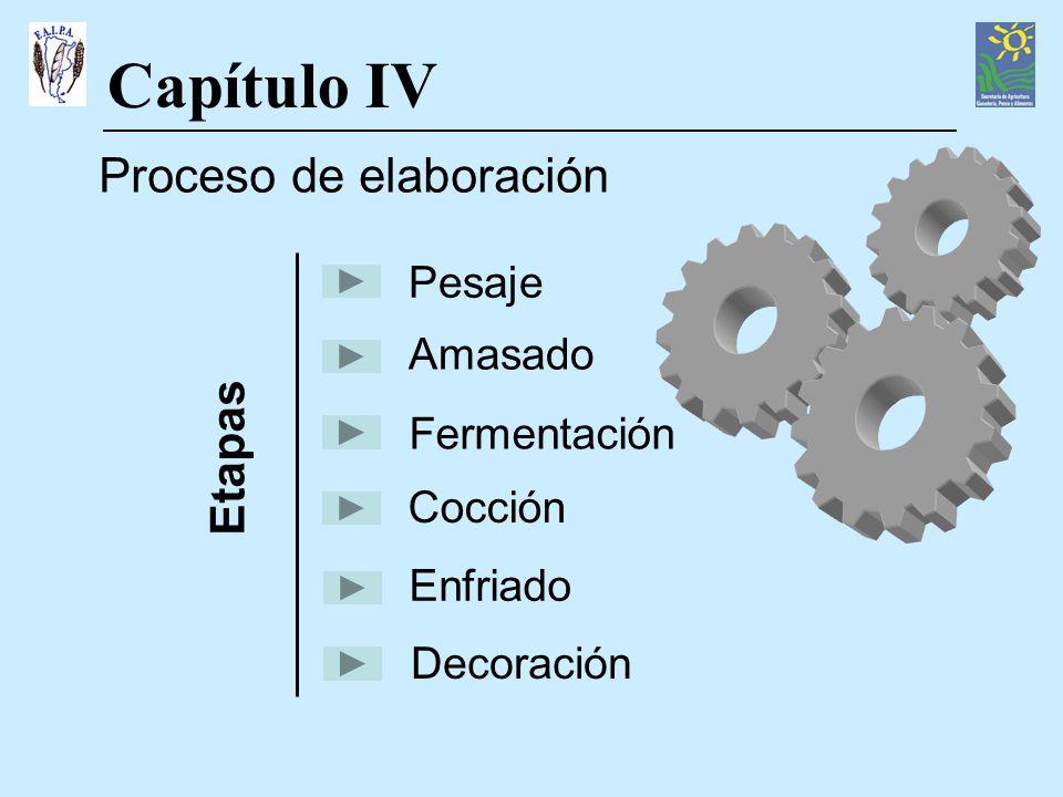 Capítulo IV Proceso de elaboración Etapas Pesaje Amasado Fermentación