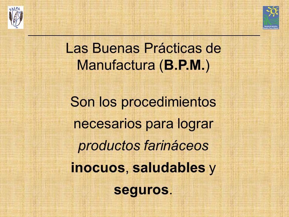 Las Buenas Prácticas de Manufactura (B.P.M.)