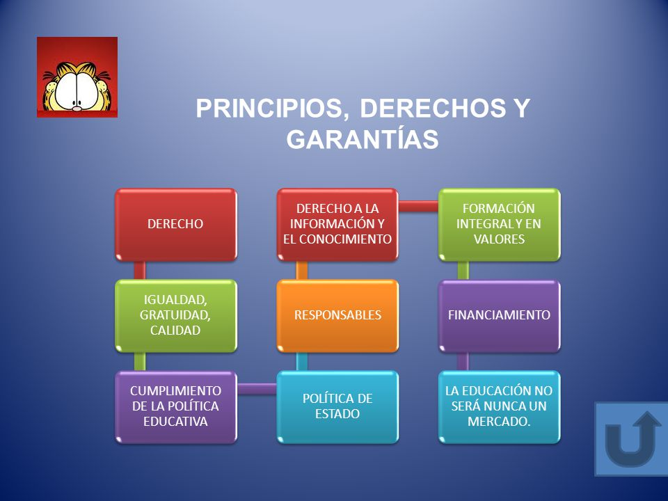 PRINCIPIOS, DERECHOS Y GARANTÍAS