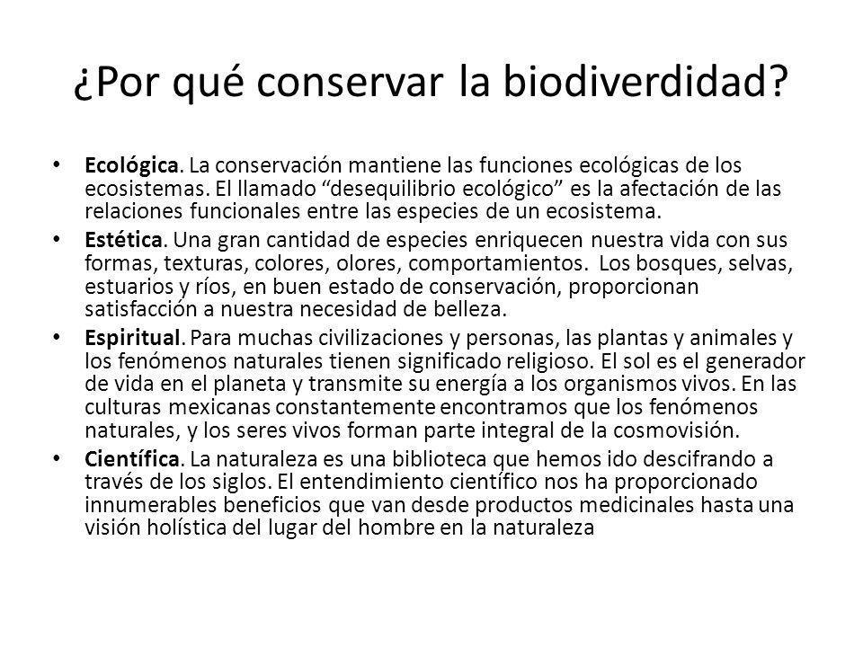 ¿Por qué conservar la biodiverdidad