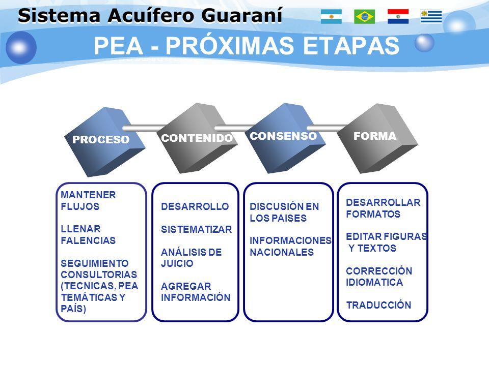 PEA - PRÓXIMAS ETAPAS CONTENIDO CONSENSO FORMA PROCESO MANTENER FLUJOS